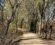 river-walk-trail