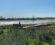 view-at-wetlands