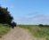 dirt-trail-heading-south